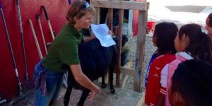 elementary farm field trip milking