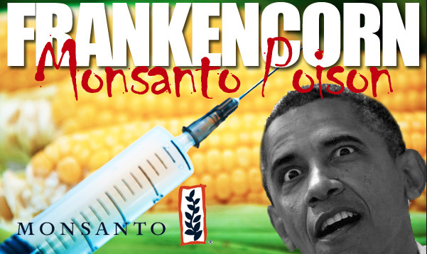Monsanto's Herbicide Linked to Fatal Kidney Disease Epidemic: Could It Topple the Company?