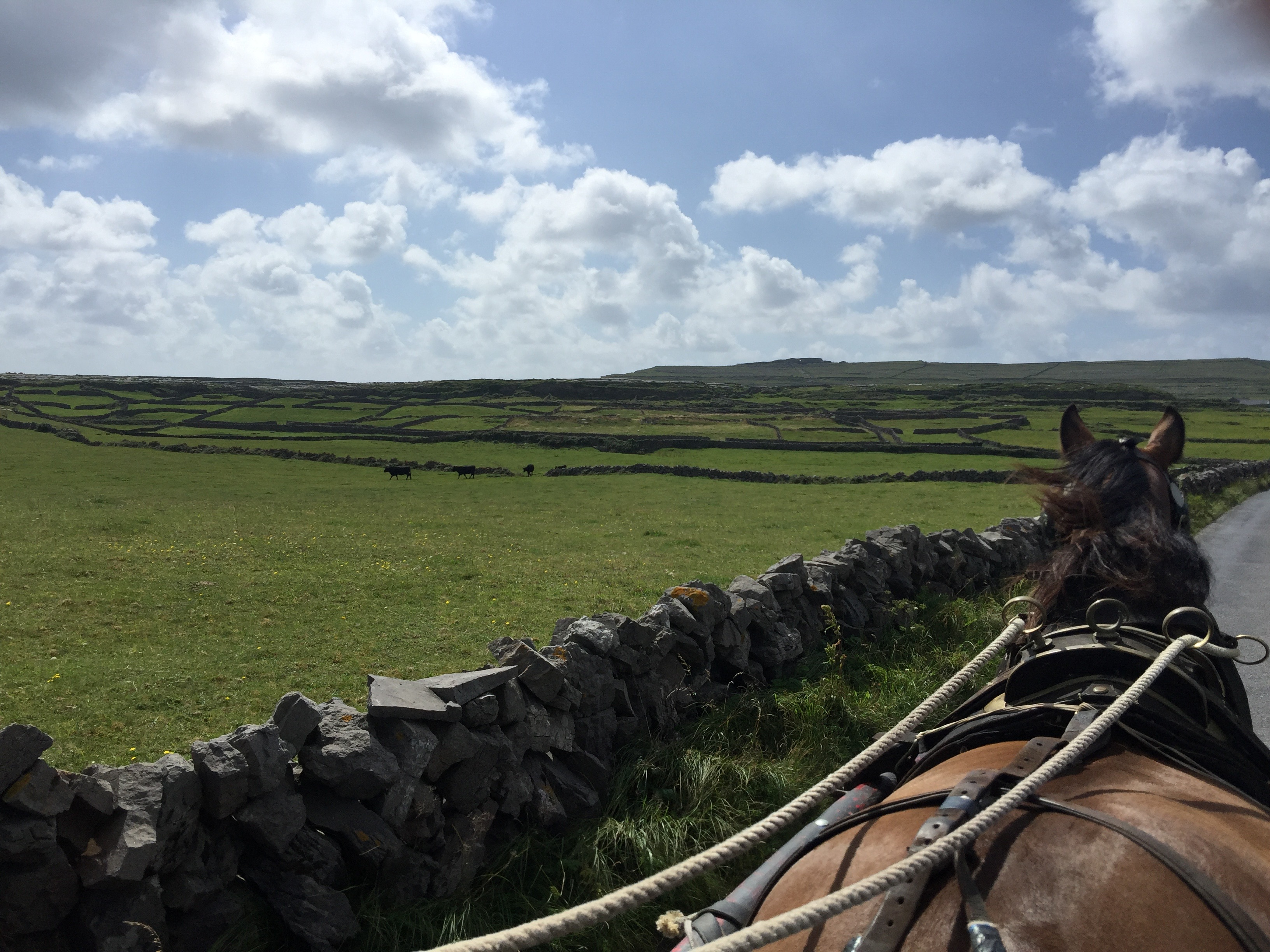 Ever wanted to live like a farmer in Ireland?