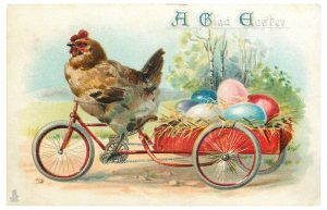 butt nuggets-chicken-bicycle-vintage-easter