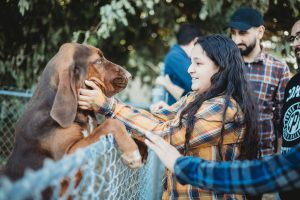 farm girl with bloodhound tour