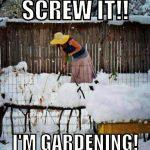 February: Preparing for the Spring garden