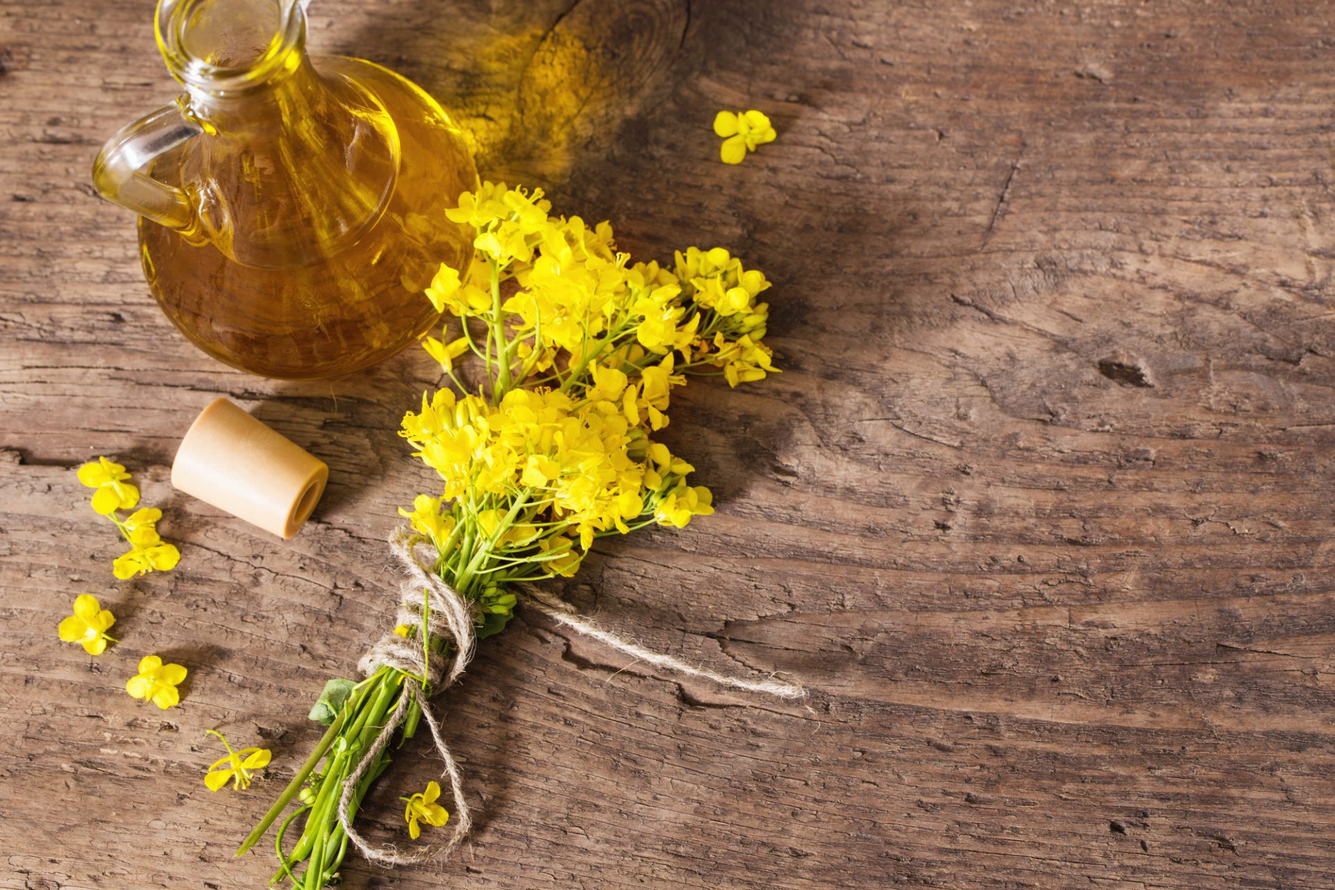 is canola oil bad for you