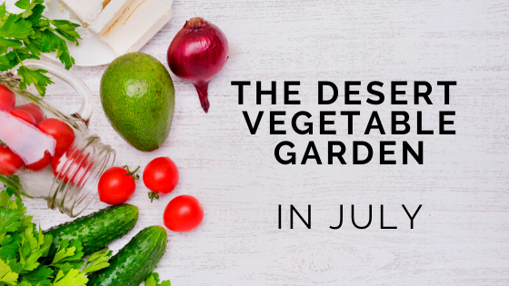 desert gardening what to do in july