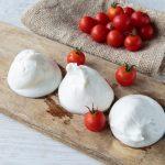 Learn How to Make Mozzarella Cheese