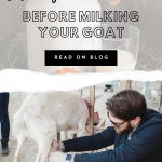 6 items before milking your goat pin