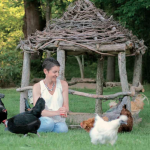 The Chicken Chick's Guide to Backyard Chickens-Book review 2020