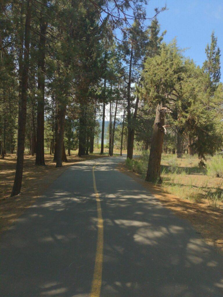 alpine pedal path hikes in big bear